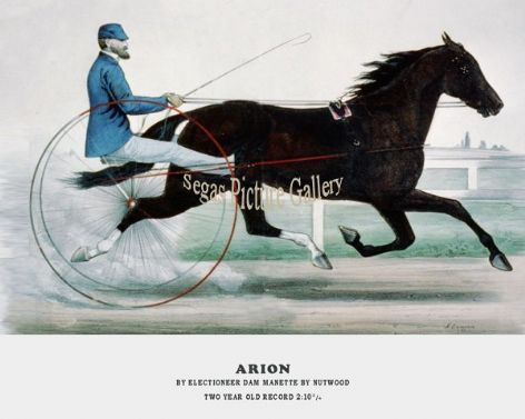 Fine art Horseracing Print of the 1800's Racing and Trotting of Arion by Electioneer Dam Manette by Nutwood